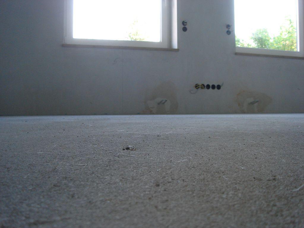 estrichverlegung f r efh in leipzig bauinfob ro. Black Bedroom Furniture Sets. Home Design Ideas